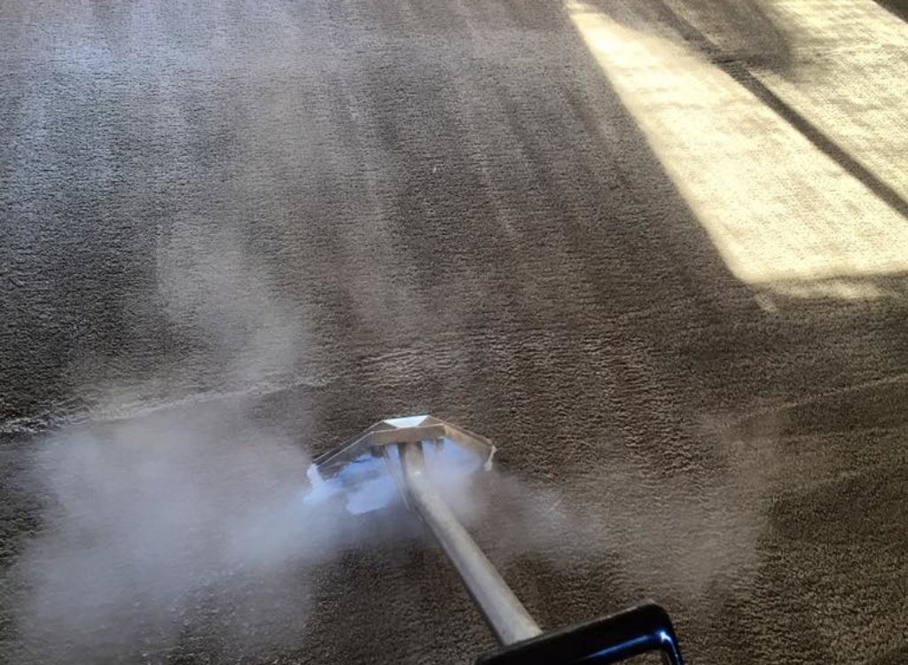 Steam Cleaning (3)